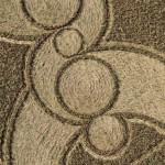 Эйвбери-круги на полях-14-октября-4