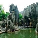 Каменный лес1