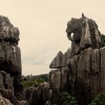 Каменный лес7