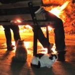 Огненный холм Янардаг6