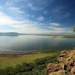 Озеро Накуру1