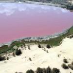 Розовое озеро Ретба5