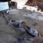 гробница-Сапотеков-7