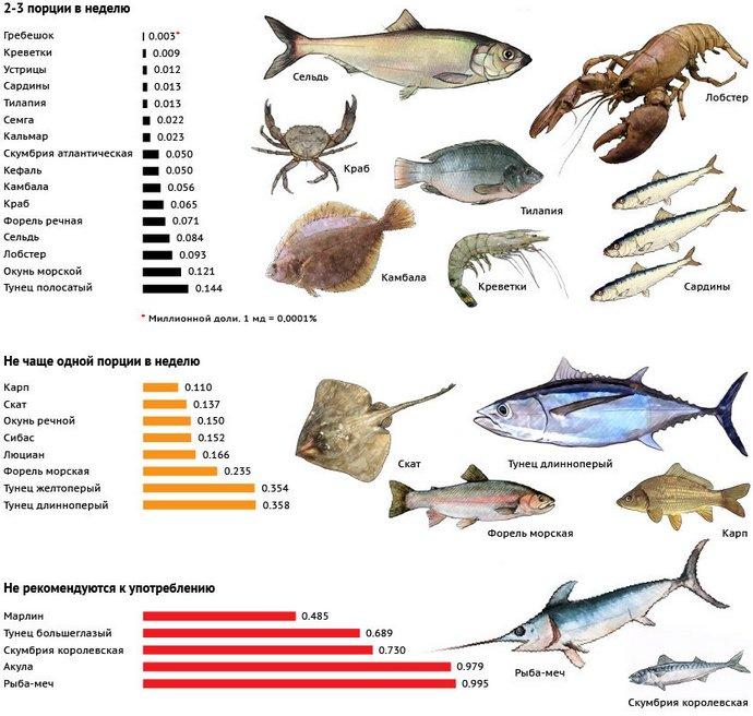 список морепродуктов, в которых наиболее высокое содержание ртути