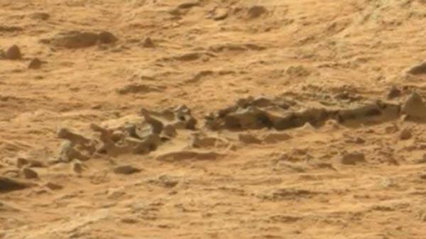 Curiosity, скелет ящерицы, Марс