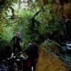 Waitomo Caves4