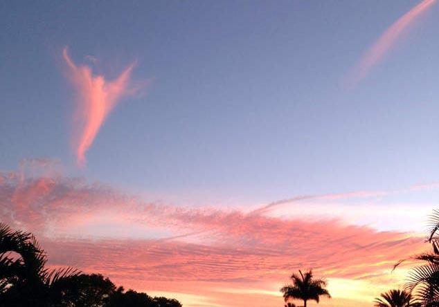Облачный ангел, Флорида