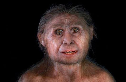 Homo floresiensis, Человек-хоббит