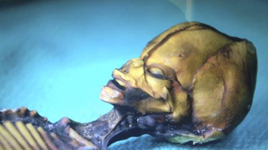 Steven Greer, мумия пришельца