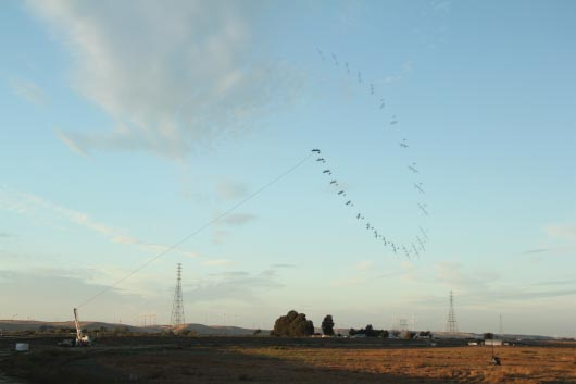 Makani Power, летающие ветрогенераторы, Airborne Wind Turbine, альтернативная энергия