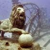 Neptune Memorial Reef5