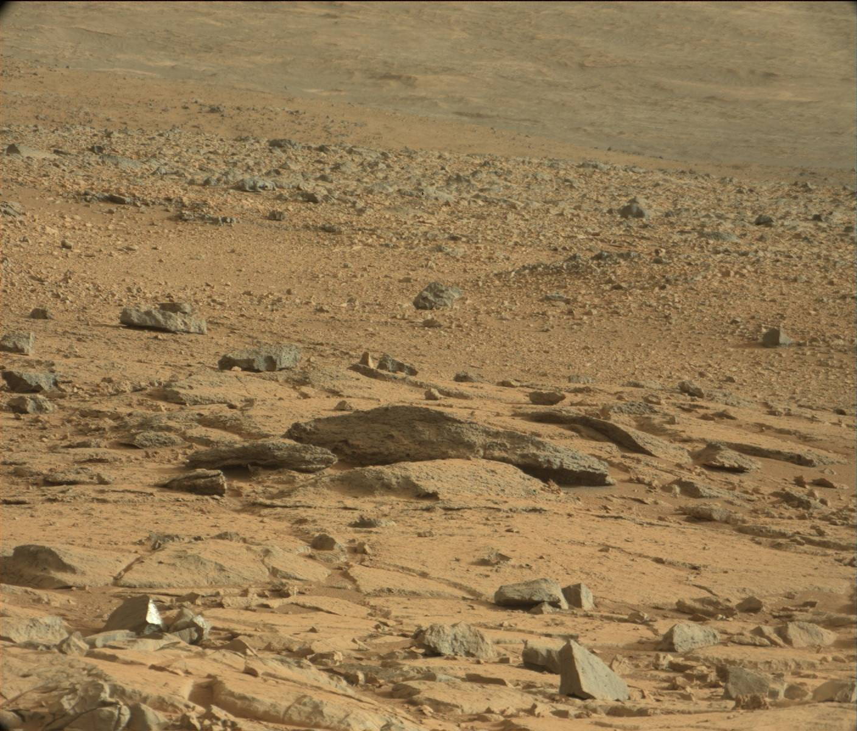 Марс, ящерица на Марсе, Curiosity