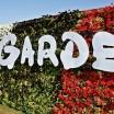Dubai Miracle Garden1