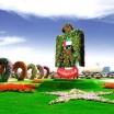 Dubai Miracle Garden5