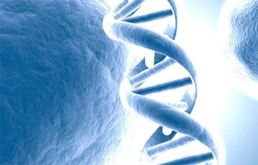 наука, генетика, ген