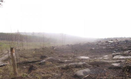 Чертово кладбище, аномальные зоны, мистические существа