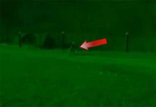 Видео НЛО 2014, НЛО 2014, UFO 2014, НЛО, UFO, пришелец