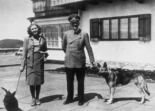 Гитлер, серый волк, Simon Dunstan, Gerrard Williams