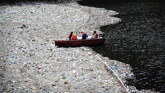 остров из мусора, Great Pacific Garbage Patch