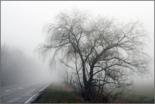 Белоруссия, призрак