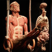 skulptury-Gunther von Hagens-4